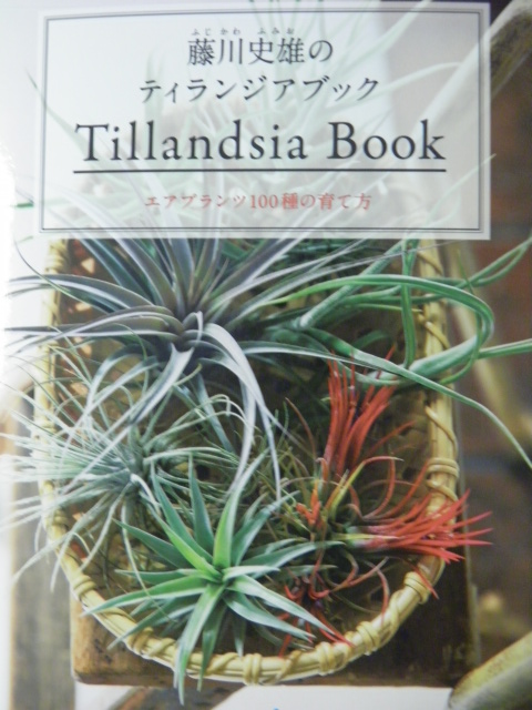 Tillandsia Book
